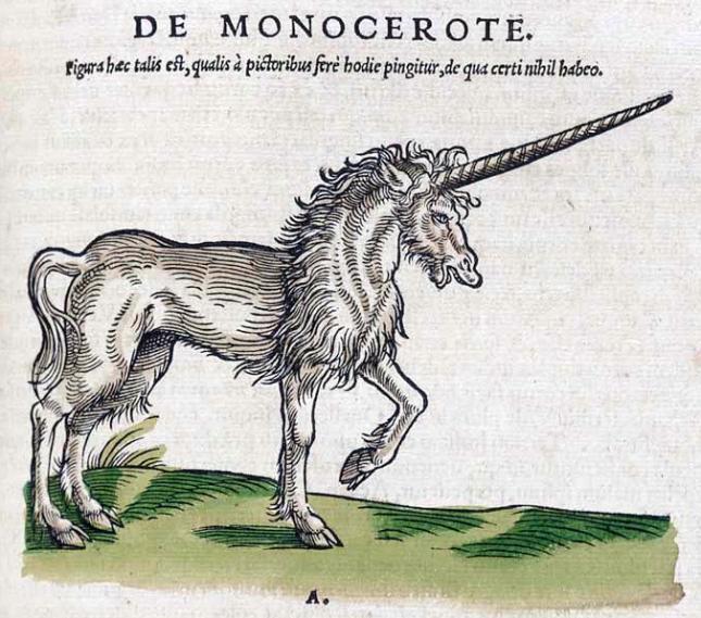 LI20 Historiae_animalium_1551_De_Monocerote