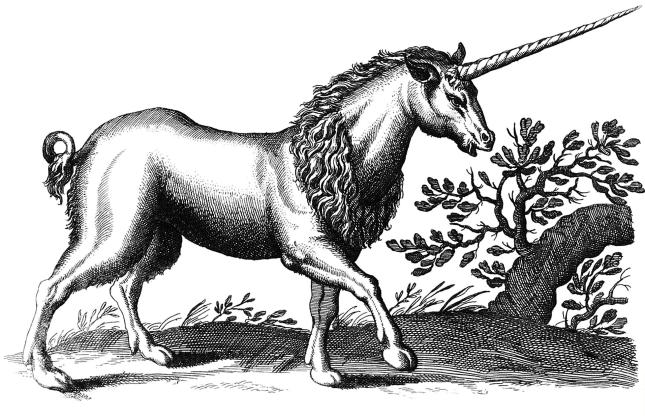 LI9 unicorn-engraving-q85-1981x1298