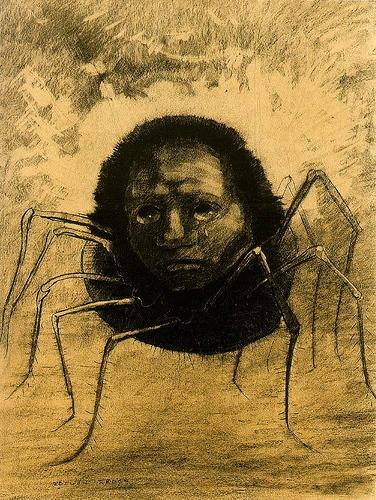 Redon araignée1