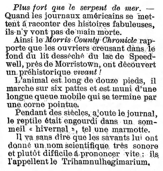 DINO VIVANT LE TAFNA 6 mai 1903