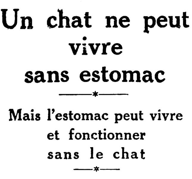 chat-estomac-image