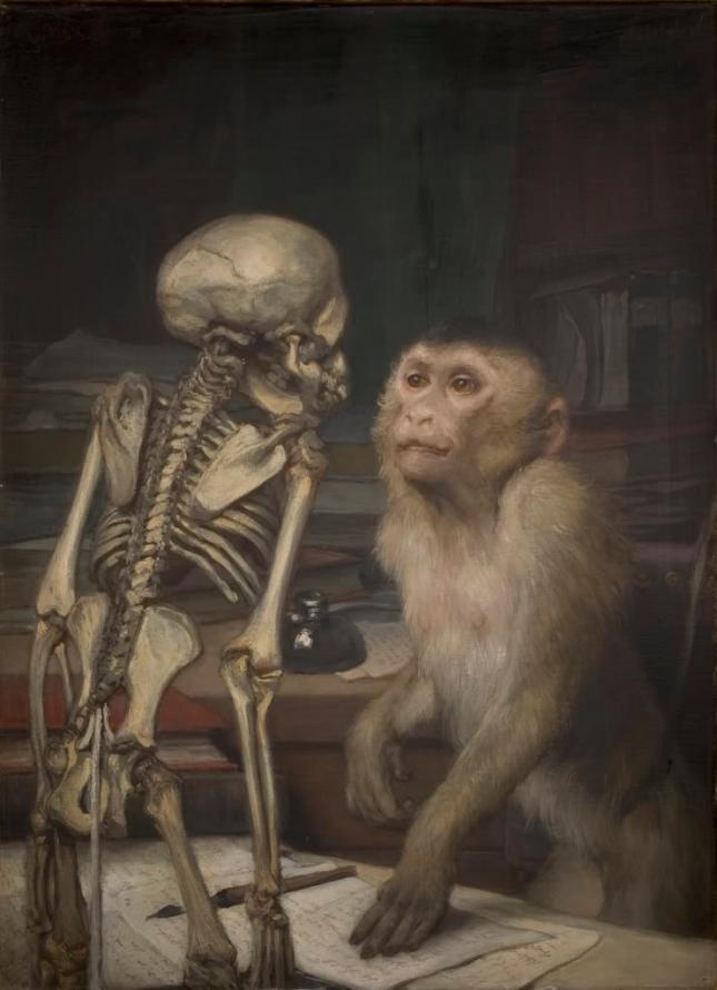 affe-vor-skelett