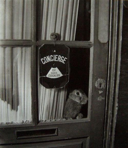 concierge3