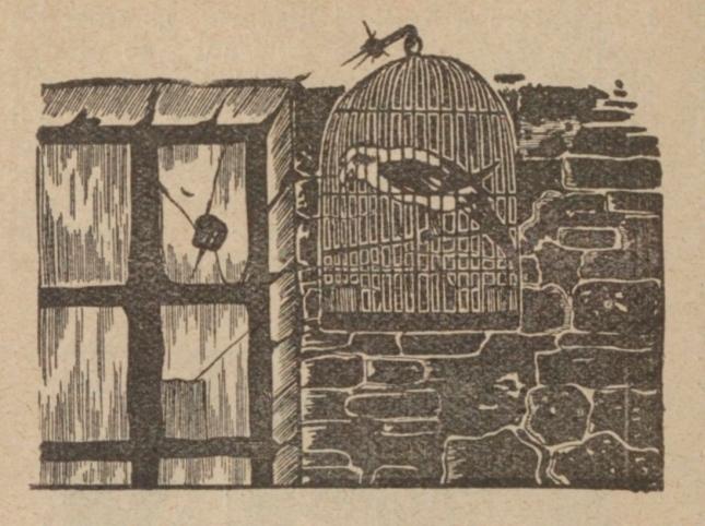vin-samien-image